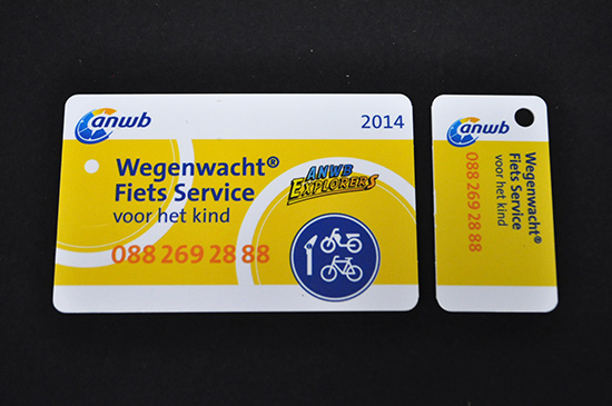 Customer Loyalty Plastic Membership ID Cards with Detachable Key Ring